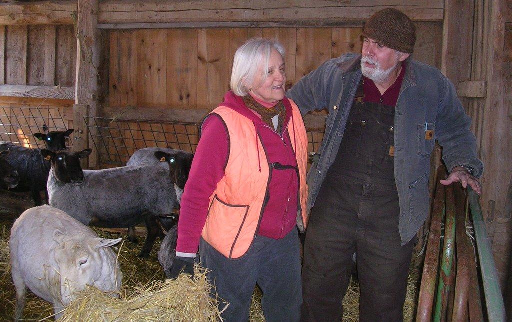 Shearing_20120310_26