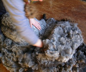 pretty grey fleece