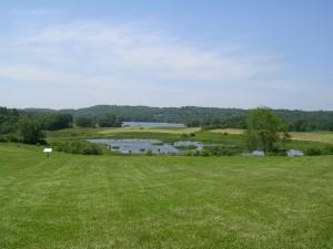 GSB farm view