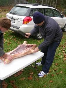 prepping pig